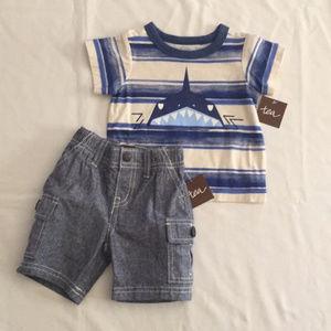 Tea Collection Cargo Shorts and Tee Shirt